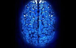 Как заставить мозг работать быстрее и эффективнее?