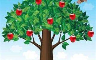 Метод дерева целей: основные правила построения системы