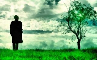 Что означает зеленый цвет: психология