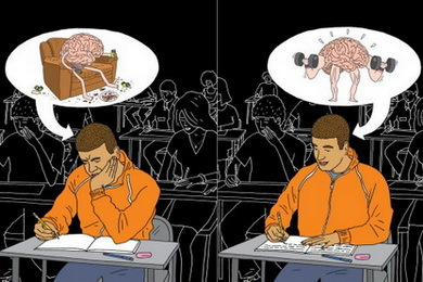 Работоспособность мозга: отчего зависит и как увеличить