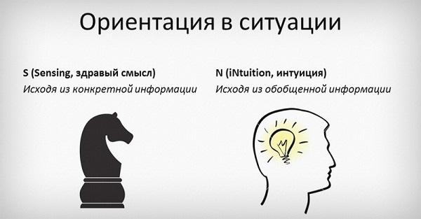 Типология Майерс Бриггс: определение типа личности