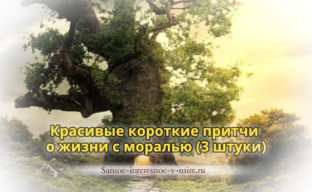 Притчи про жизнь со смыслом в которых содержится мудрость