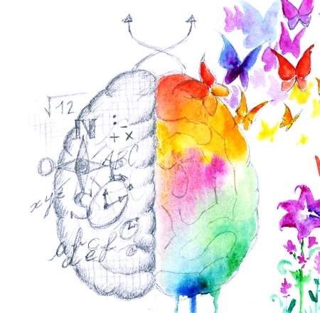 За что отвечает правое полушарие мозга: упражнения для развития