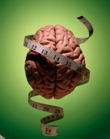 возможности мозга человека: как развить по максимуму