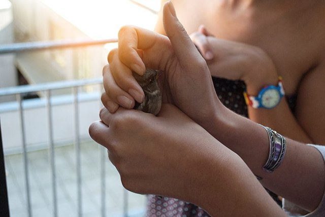 Почему жалость плохое чувство и как от нее избавиться