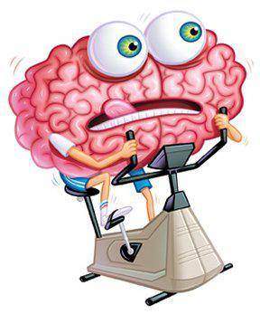 Витамины для головного мозга: 14 жизненно важных