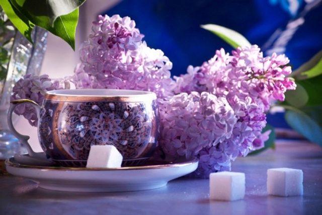 Что обозначает фиолетовый цвет: психология