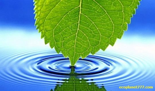 Малоизвестные факты о воде