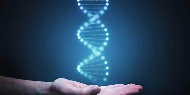Генетическая память человека: миф или реальность?