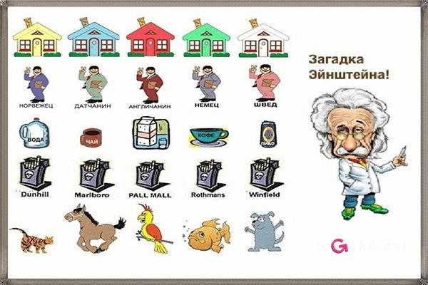 Загадка эйнштейна про 5 домов: условие и решение с ответом