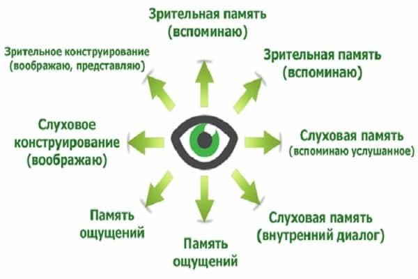 Чтение по глазам психология: как научиться читать чужие мысли
